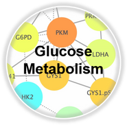 metGlucose_CLL.png