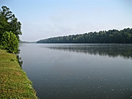 View of the Tombigbee River from the Cofeeville Service Park