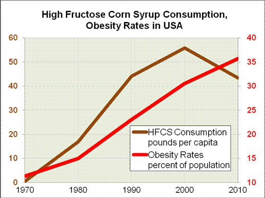 High Fructose Corn Syrup Consumption and Obesity Rates in the US