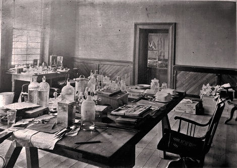 Robert Koch's Study