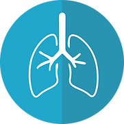 Beryllium disease primarily affects the lungs, which occurs when people inhale beryllium dust or fumes.