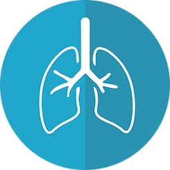 The primary effects from chronic (long-term) exposure to antimony in humans are respiratory effects that include antimony pneumoconiosis (inflammation of the lungs due to irritation caused by the inhalation of dust), alterations in pulmonary function, chronic bronchitis, chronic emphysema, inactive tuberculosis, pleural adhesions, and irritation.