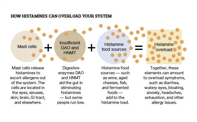 How histamines can overload your system