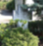 Dr. Otto Warburg grave.jpg