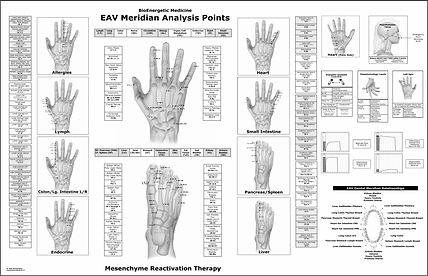 EAV Meridian Analysis Points