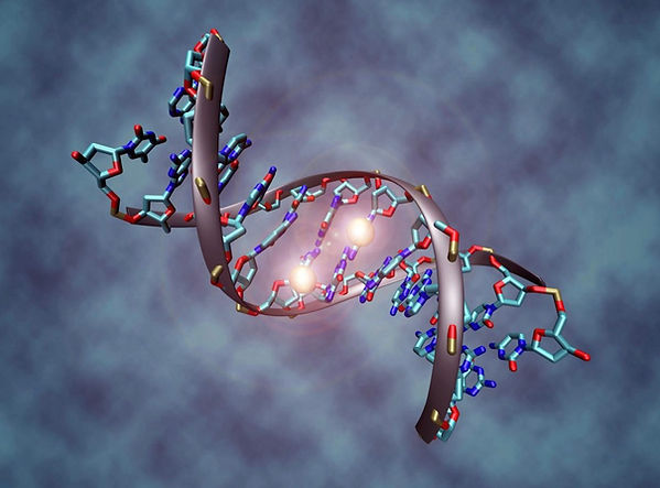 This image shows a DNA molecule that is methylated on both strands on the center cytosine. Image byChristoph Bock of CeMM Research Center for Molecular Medicine of the Austrian Academy of Sciences, Vienna.