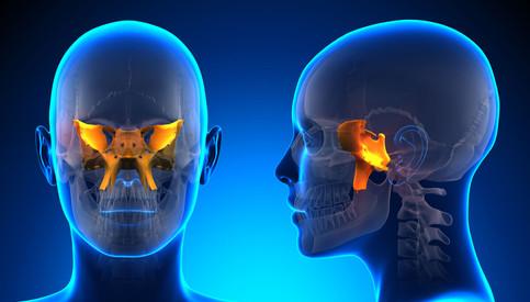 Nasal Cranial Remodeling