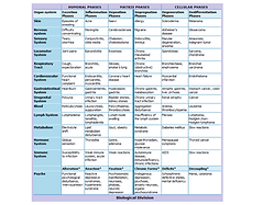 Disease Evolution Table