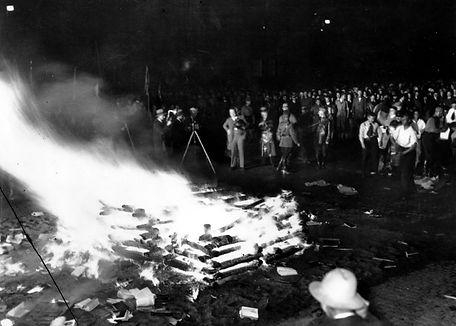 Nazis destroying books