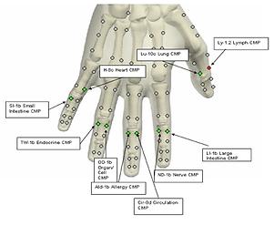 Image of Hand