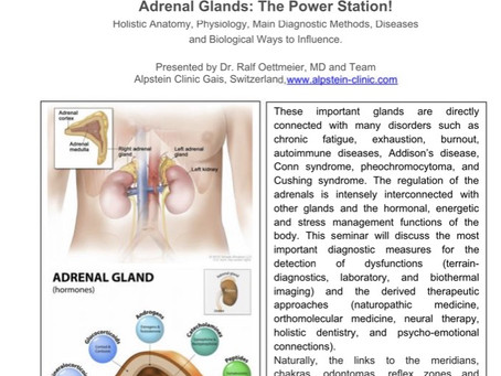Jan. 23: the Adrenal Glands - the Power Station! (an interactive webinar hosted by Dr. Ralf Oettmeie