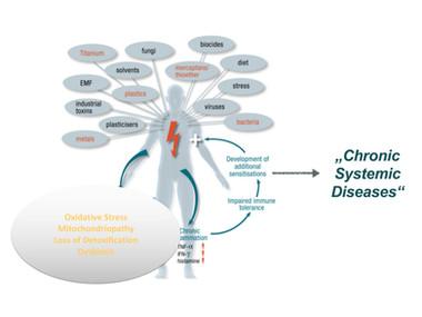 Toxins, Foci, Interfering fields, teeth