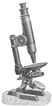 A Seibert microscope of the type Koch used to study the anthrax bacillus. Later Koch used Zeiss microscopes. (Reference: Brock TD. Robert Koch: a life in medicine and bacteriology. Washington, DC: American Society of Microbiology Press; 1999. p. 55.)
