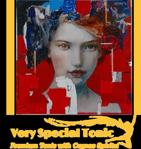 SenseofSpiritsVerySpecialTonic_Page1.png