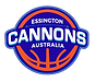 2020 Cannons Logo.png