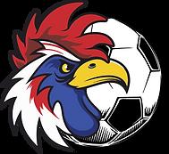 Irving-FC-fan-club.png