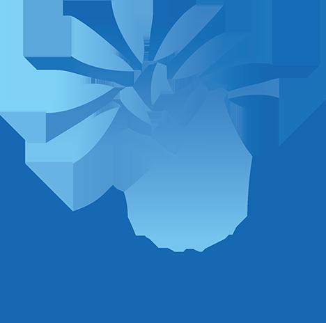 Molham Team
