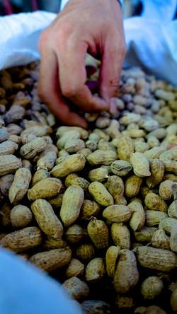 Cacahuètes du Vietnam