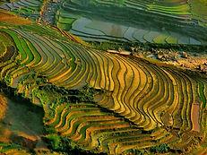 Muong Hoa Vietnam