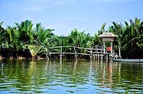 Forêt de cocotiers d'eau - Yes We Bike Hoi An