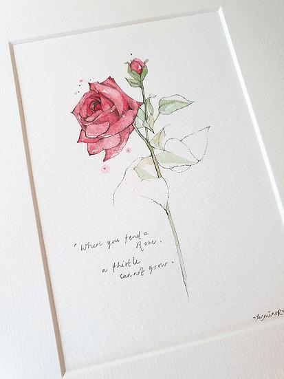Where you tend a Rose