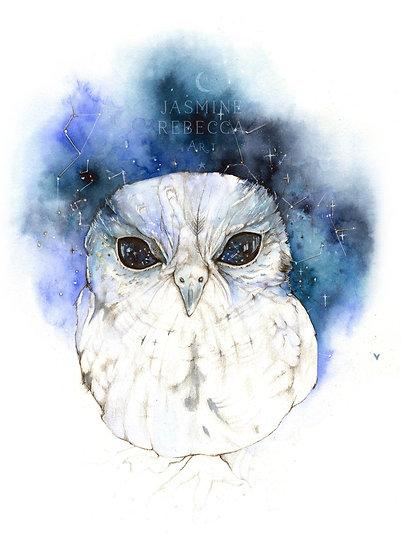 Zeus the Owl Print