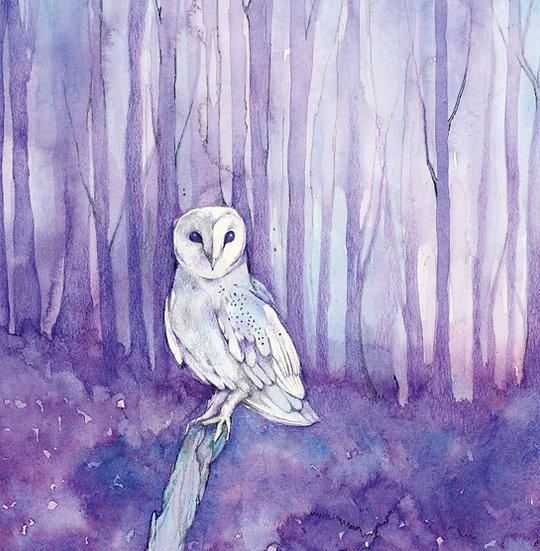 Moon the Owl Card