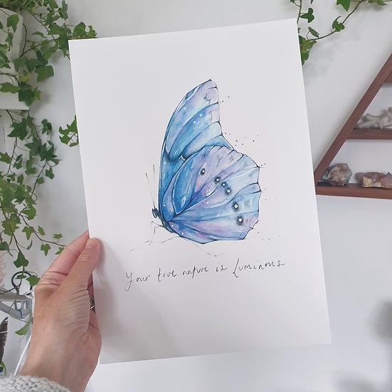 Luminous Butterfly Print