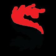 Big Splash Logo Black-Red.png