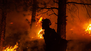 Large Active Wildfires Ongoing in the US