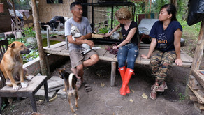 Indonesia's First and Only Farmed Animal Sanctuary