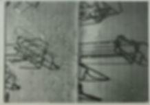 book of 3.jpg