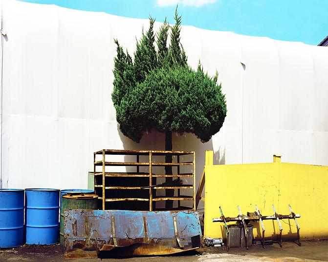 木と鉄1.jpg
