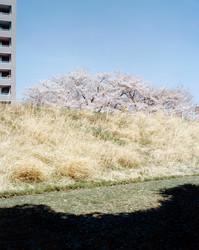 Tamotsu Kido