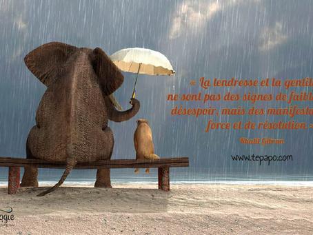 Pleine Conscience de la Gentillesse, allez-vous relever le défi?