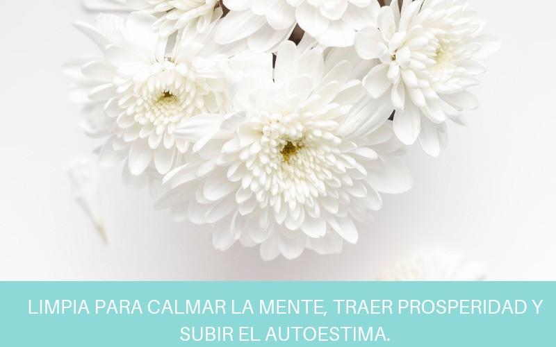 LIMPIA PARA CALMAR LA MENTE, TRAER PROSPERIDAD Y SUBIR EL AUTOESTIMA. | Diana Fernandez  | Coach Espiritual  | www.diana-fernandez.com | Angeles
