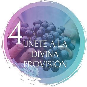0 Divina Provision.jpg