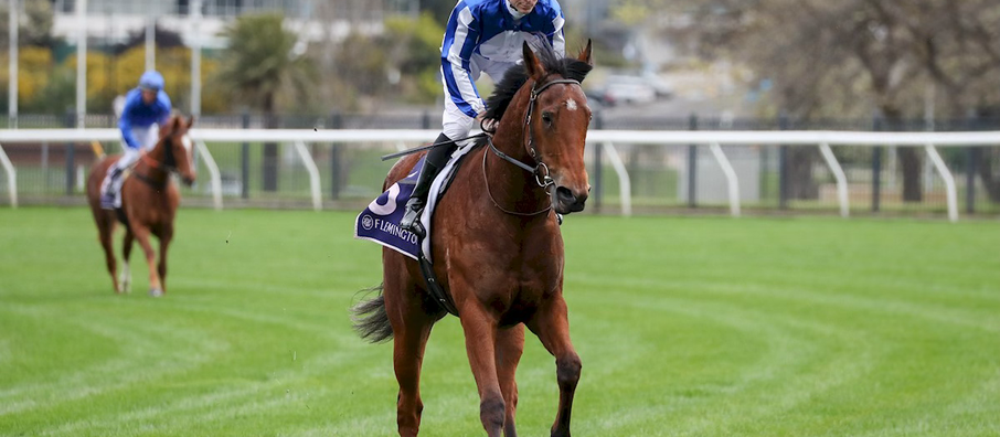Crystal Bound for Spring Riches