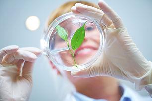 biologia vegetal.jpg
