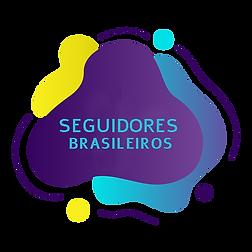 SEGUIDORES BRASILEIROS.png