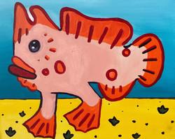 Hamish the Handfish