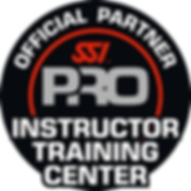 SSI_LOGO_Inst_Tr_Center.png