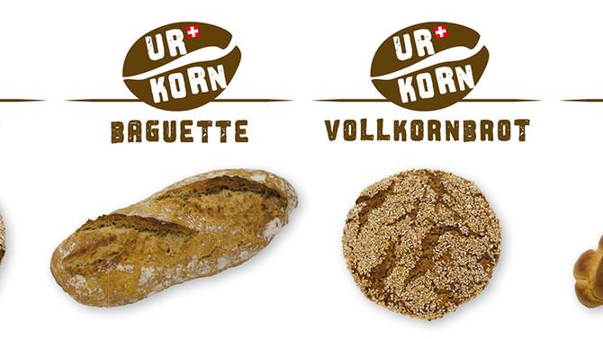 Aus Schweizer UrDinkel, Emmer und Einkorn