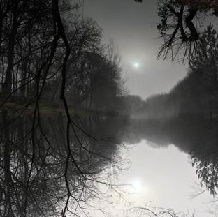 étang dans la brume
