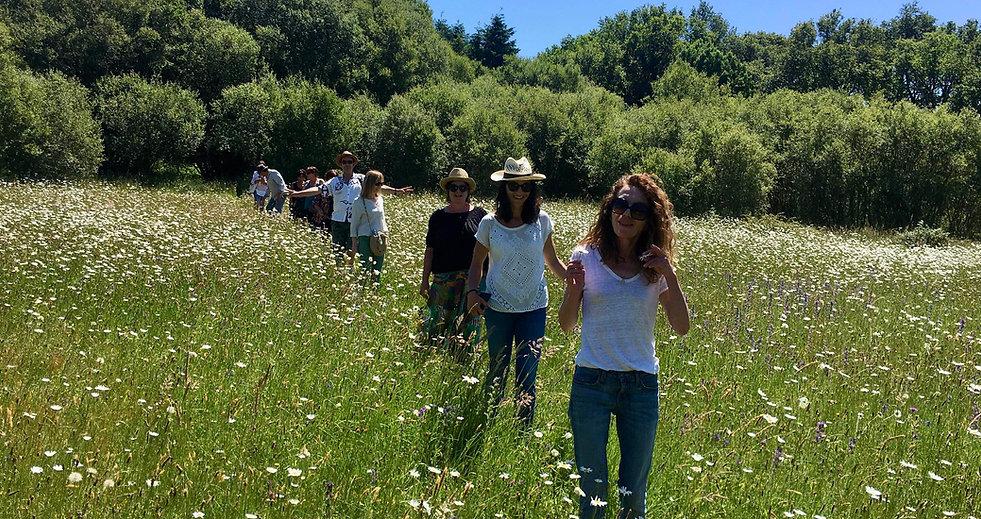 visiteurs dans un champs de fleurs.jpg