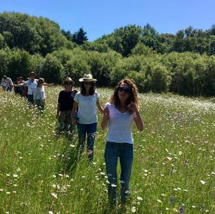 visiteurs dans un champs de fleurs sauvages
