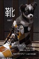 はがきココ.jpg