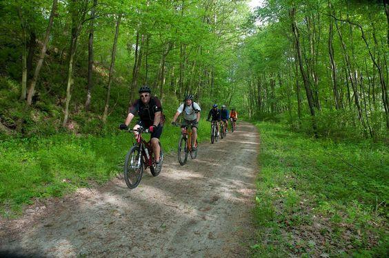 mt. biking 2.jpg