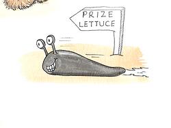 Slug and Prize Lettuce cartoon