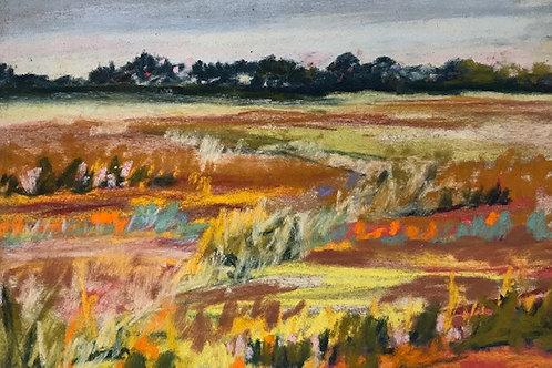 Field Textures